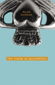 Cover of The Realm of Possibility by David Levithan