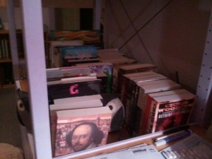 Photo of my makeshift bookshelves, crammed with books